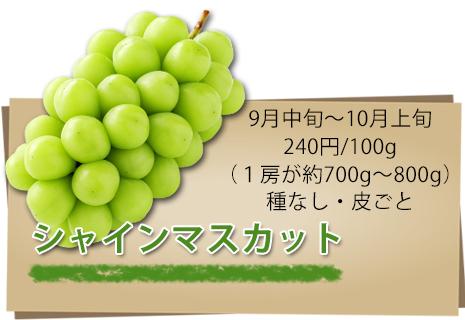 シャインマスカット紹介